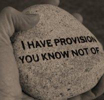 provision8